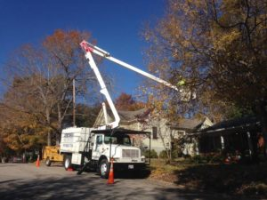 Home Tree Removal Bucket Truck Raleigh NC