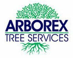 Arborex Trees