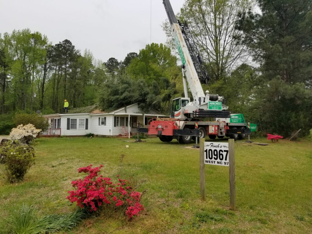 Home Tree Removal using Crane Garner NC