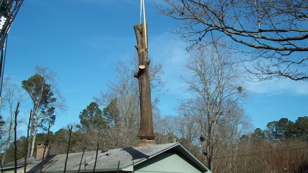 Crane lifted over home Tree Trunk Raleigh NC