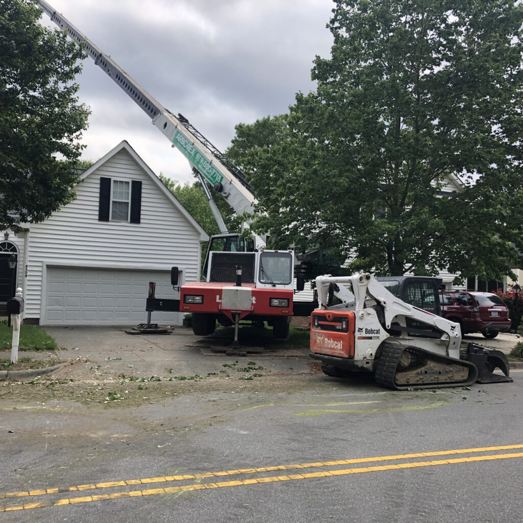 Crane and Bobcat Home Tree Removal Apex NC
