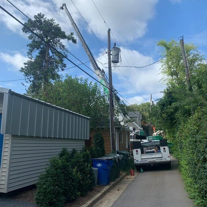 Tree Removed from Dangerous Power Lines Raleigh NC